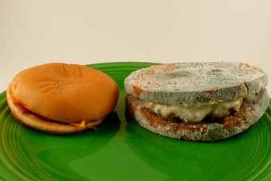 Fast Food Burger Vs Homemade