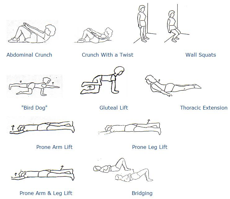 whole body fitness dan millman pdf