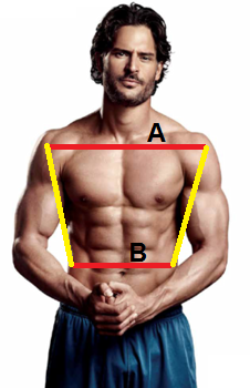 "Achieving a proportion of 1:1.618 between A and B is the epitome of ""fit""...so says the scientists."