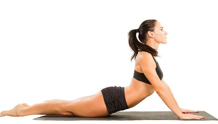 long lean muscle